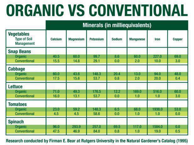 organic-vs-inorganic