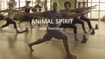 Animal Spirit Yoga